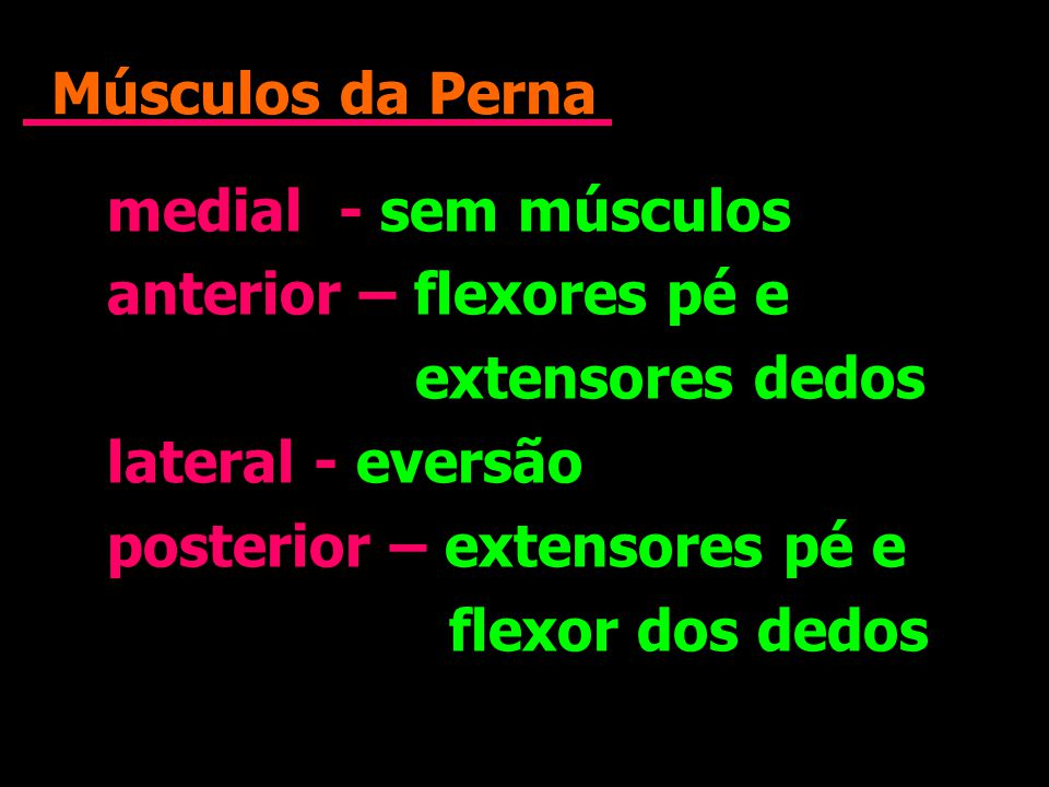 Músculos da Perna medial - sem músculos anterior – flexores pé e extensores dedos lateral - eversão posterior – extensores pé e flexor dos dedos media