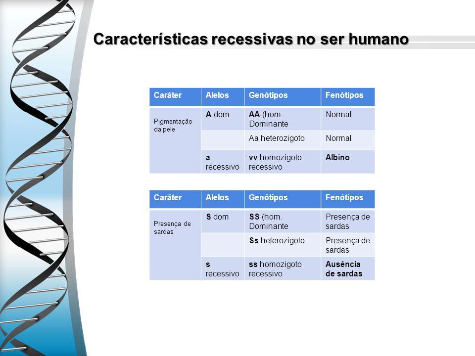 Características recessivas no ser humano CaráterAlelosGenótiposFenótipos Pigmentação da pele A domAA (hom. Dominante Normal Aa heterozigotoNormal a re