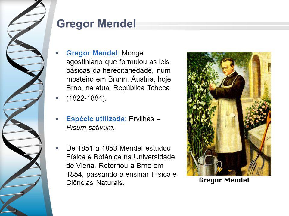Gregor Mendel Gregor Mendel: Monge agostiniano que formulou as leis básicas da hereditariedade, num mosteiro em Brünn, Áustria, hoje Brno, na atual Re