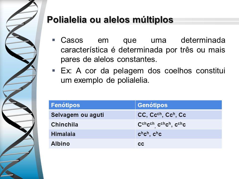 Polialelia ou alelos múltiplos Casos em que uma determinada característica é determinada por três ou mais pares de alelos constantes. Ex: A cor da pel