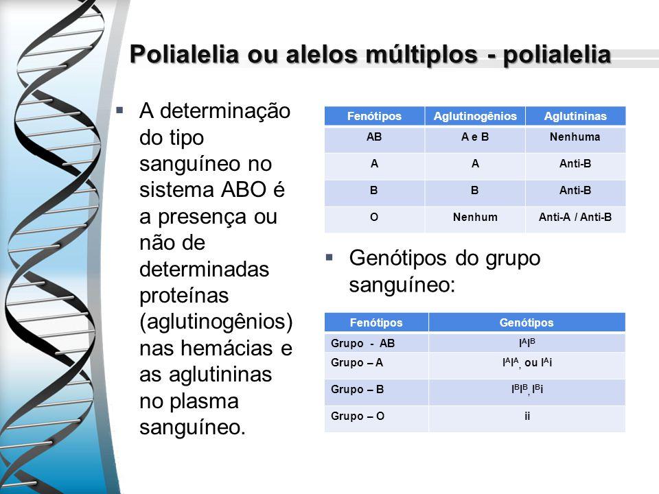 Polialelia ou alelos múltiplos - polialelia A determinação do tipo sanguíneo no sistema ABO é a presença ou não de determinadas proteínas (aglutinogên