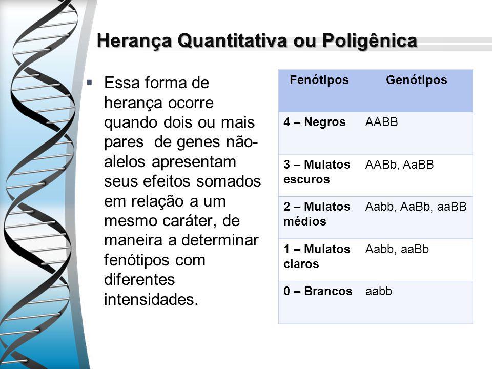 Herança Quantitativa ou Poligênica Essa forma de herança ocorre quando dois ou mais pares de genes não- alelos apresentam seus efeitos somados em rela