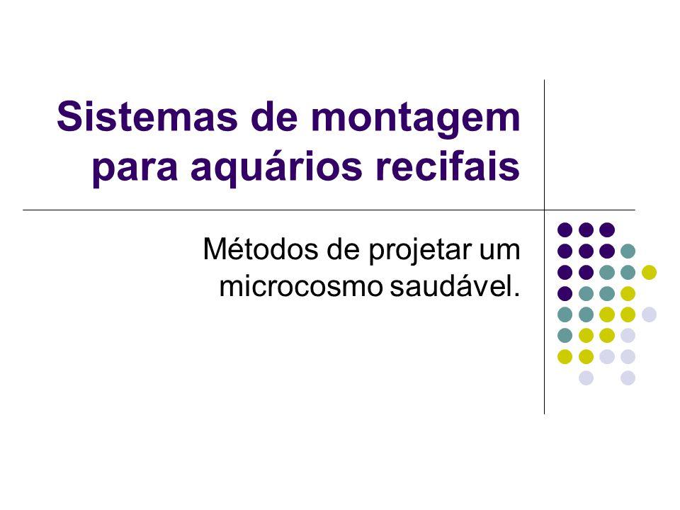 Sistemas de montagem para aquários recifais Métodos de projetar um microcosmo saudável.