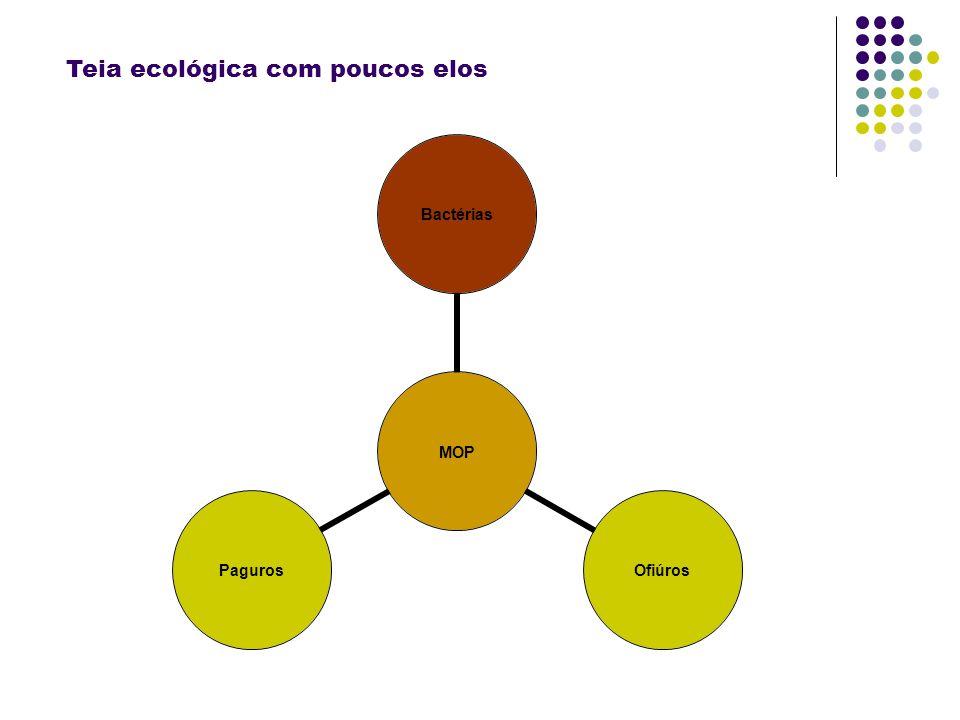 MOP BactériasOfiúrosPaguros Teia ecológica com poucos elos