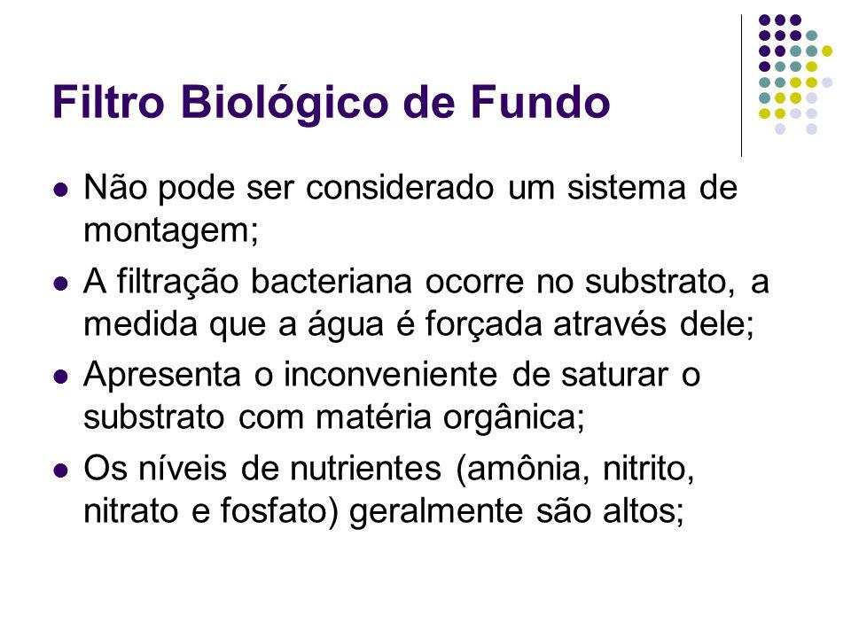 Filtro Biológico de Fundo Não pode ser considerado um sistema de montagem; A filtração bacteriana ocorre no substrato, a medida que a água é forçada a