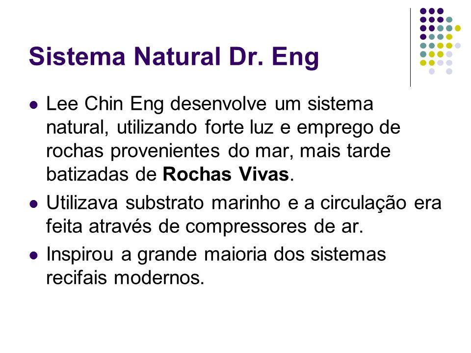 Sistema Natural Dr. Eng Lee Chin Eng desenvolve um sistema natural, utilizando forte luz e emprego de rochas provenientes do mar, mais tarde batizadas