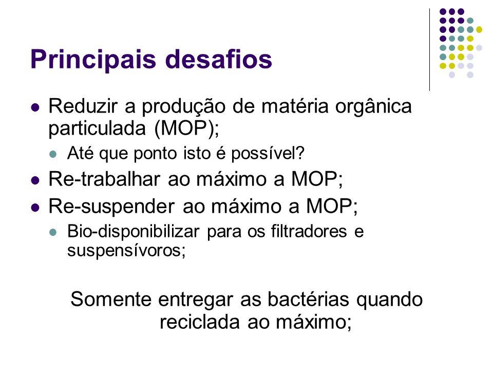Principais desafios Reduzir a produção de matéria orgânica particulada (MOP); Até que ponto isto é possível? Re-trabalhar ao máximo a MOP; Re-suspende