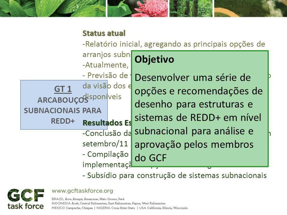 GT 1 ARCABOUÇOS SUBNACIONAIS PARA REDD+ Status atual -Relatório inicial, agregando as principais opções de arranjos subnacionais em discussão (2010) -