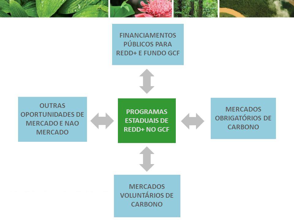 OUTRAS OPORTUNIDADES DE MERCADO E NAO MERCADO MERCADOS VOLUNTÁRIOS DE CARBONO MERCADOS OBRIGATÓRIOS DE CARBONO FINANCIAMENTOS PÚBLICOS PARA REDD+ E FU
