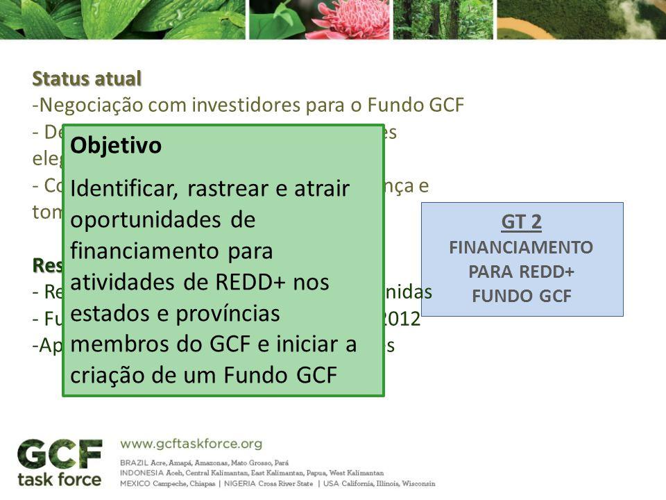 GT 2 FINANCIAMENTO PARA REDD+ FUNDO GCF Status atual -Negociação com investidores para o Fundo GCF - Definição das modalidades e atividades elegíveis
