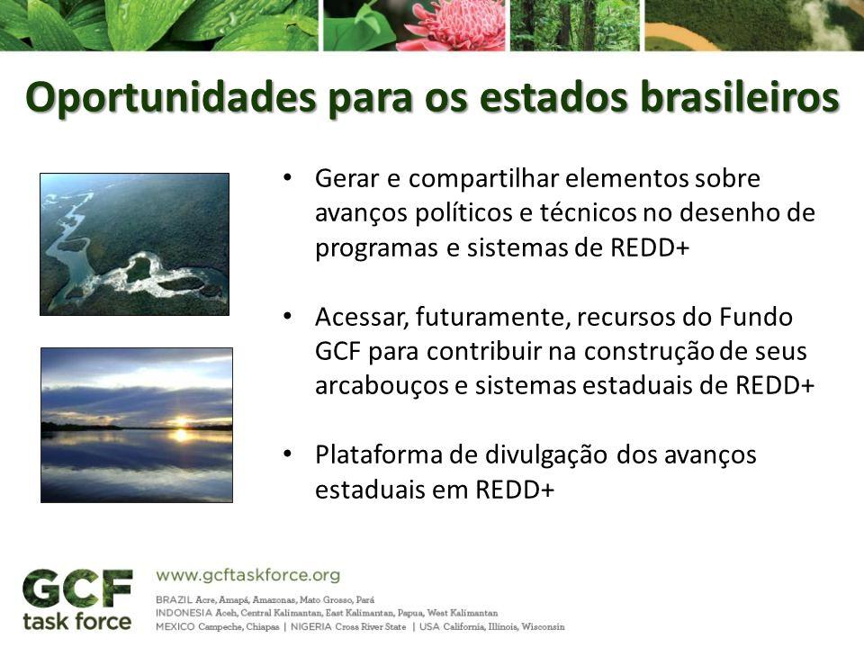 Oportunidades para os estados brasileiros Gerar e compartilhar elementos sobre avanços políticos e técnicos no desenho de programas e sistemas de REDD