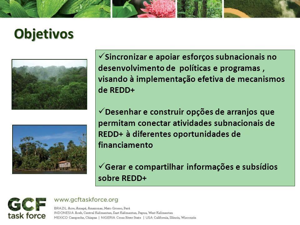 Objetivos Sincronizar e apoiar esforços subnacionais no desenvolvimento de políticas e programas, visando à implementação efetiva de mecanismos de RED