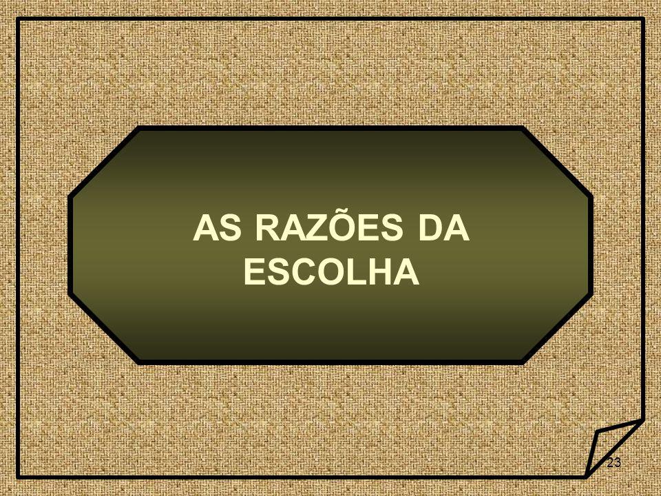 23 AS RAZÕES DA ESCOLHA