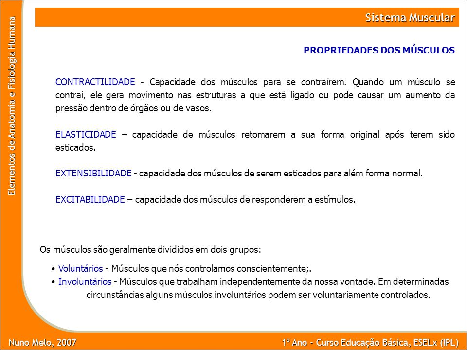 Nuno Melo, 2007 1º Ano - Curso Educação Básica, ESELx (IPL) Elementos de Anatomia e Fisiologia Humana Sistema Muscular PROPRIEDADES DOS MÚSCULOS CONTRACTILIDADE - Capacidade dos músculos para se contraírem.