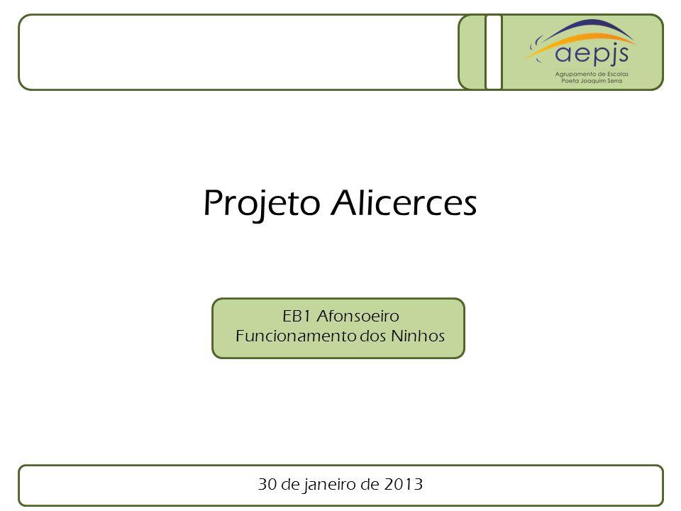 30 de janeiro de 2013 EB1 Afonsoeiro Funcionamento dos Ninhos Projeto Alicerces