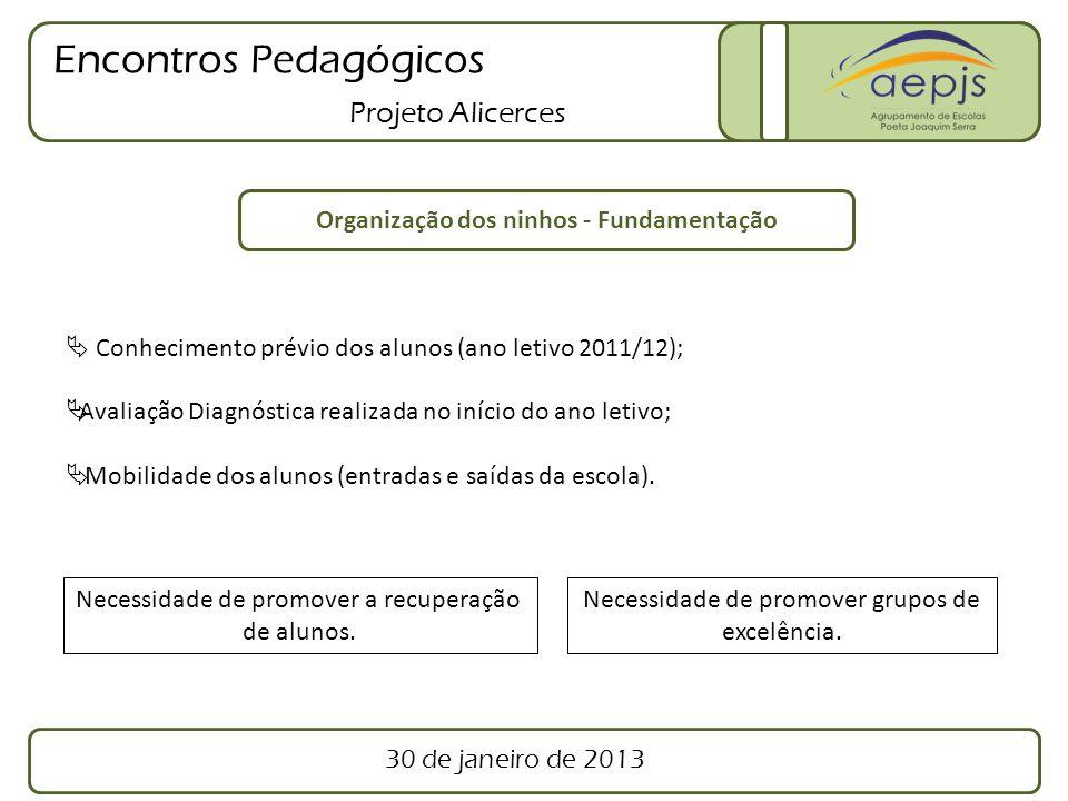 Encontros Pedagógicos Projeto Alicerces Ninho n.º 1 (Turmas do 1.º ano de Escolaridade) Turma AF1A Turma AF1B Grupo 1 Grupo 2 Apoio Educativo 30 de janeiro de 2013