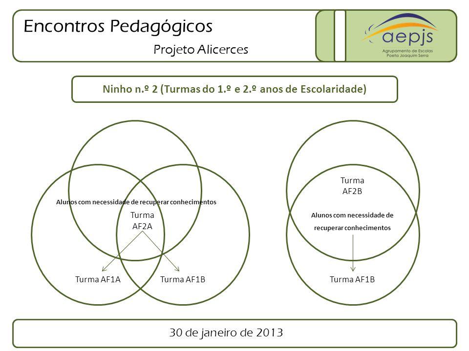 Encontros Pedagógicos Projeto Alicerces Turma AF2A Turma AF2B Ninho n.º 3 (Turmas do 2.º ano de Escolaridade) Grupo 1 Grupo 2 Apoio Educativo 30 de janeiro de 2013