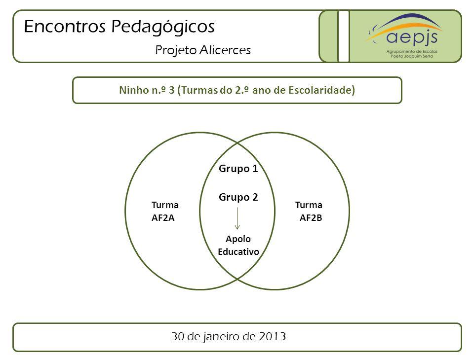 Encontros Pedagógicos Projeto Alicerces Turma AF2A Turma AF2B Ninho n.º 3 (Turmas do 2.º ano de Escolaridade) Grupo 1 Grupo 2 Apoio Educativo 30 de ja