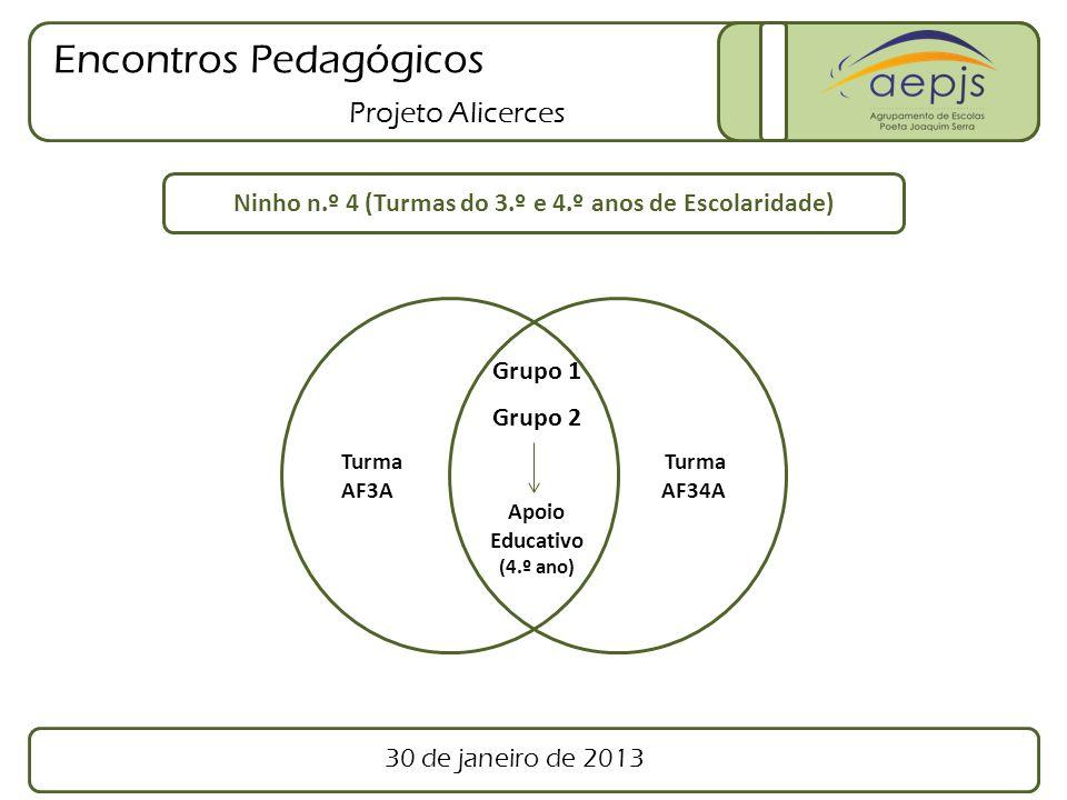 Encontros Pedagógicos Projeto Alicerces Turma AF3A Turma AF34A Ninho n.º 4 (Turmas do 3.º e 4.º anos de Escolaridade) Grupo 1 Grupo 2 Apoio Educativo (4.º ano) 30 de janeiro de 2013
