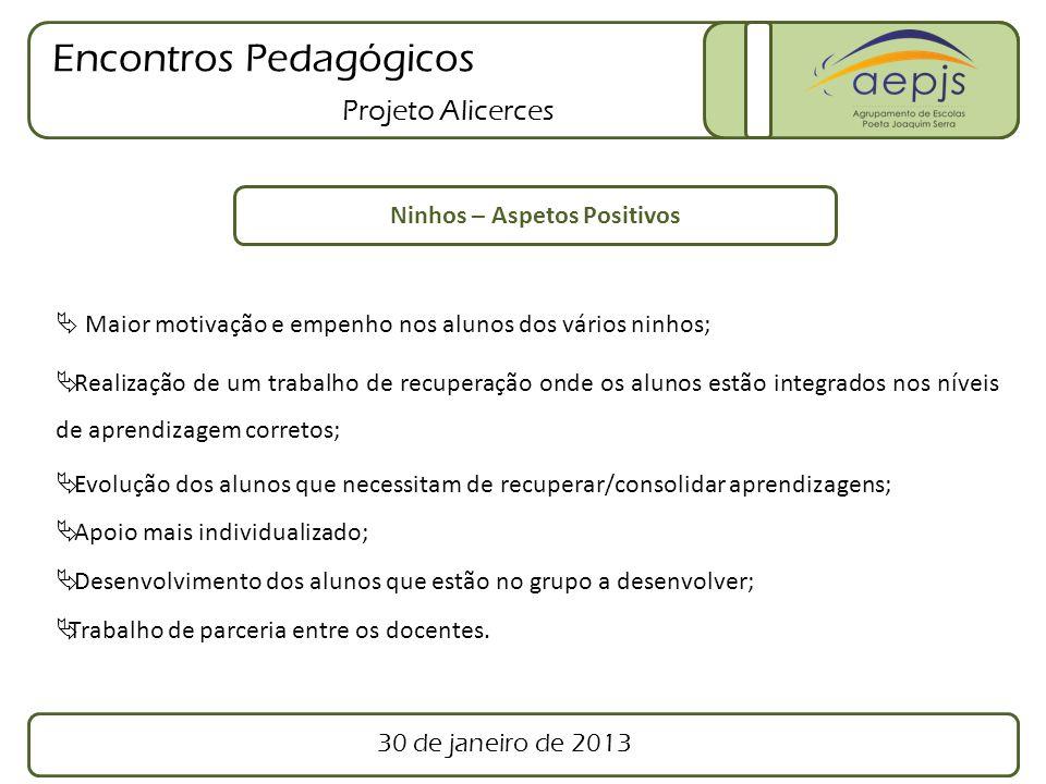 Encontros Pedagógicos Projeto Alicerces Ninhos – Aspetos Positivos Maior motivação e empenho nos alunos dos vários ninhos; Realização de um trabalho d