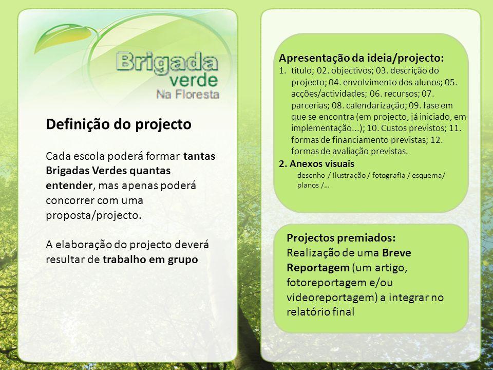 Definição do projecto Cada escola poderá formar tantas Brigadas Verdes quantas entender, mas apenas poderá concorrer com uma proposta/projecto.