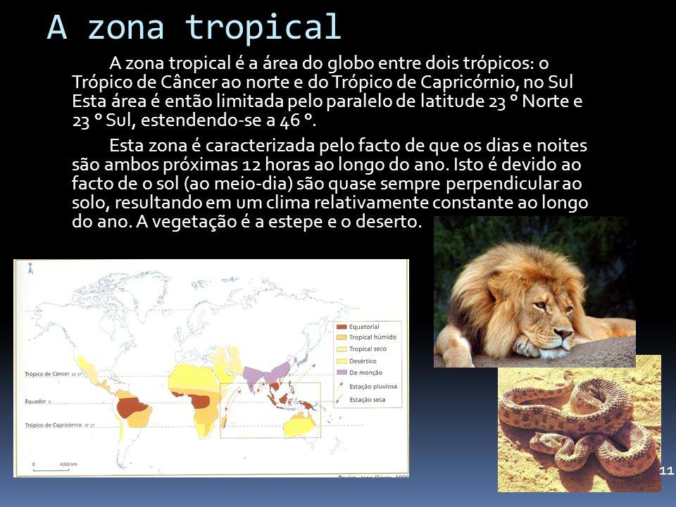 A zona tropical A zona tropical é a área do globo entre dois trópicos: o Trópico de Câncer ao norte e do Trópico de Capricórnio, no Sul Esta área é en