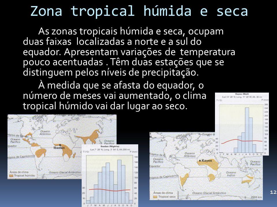 Zona tropical húmida e seca As zonas tropicais húmida e seca, ocupam duas faixas localizadas a norte e a sul do equador. Apresentam variações de tempe