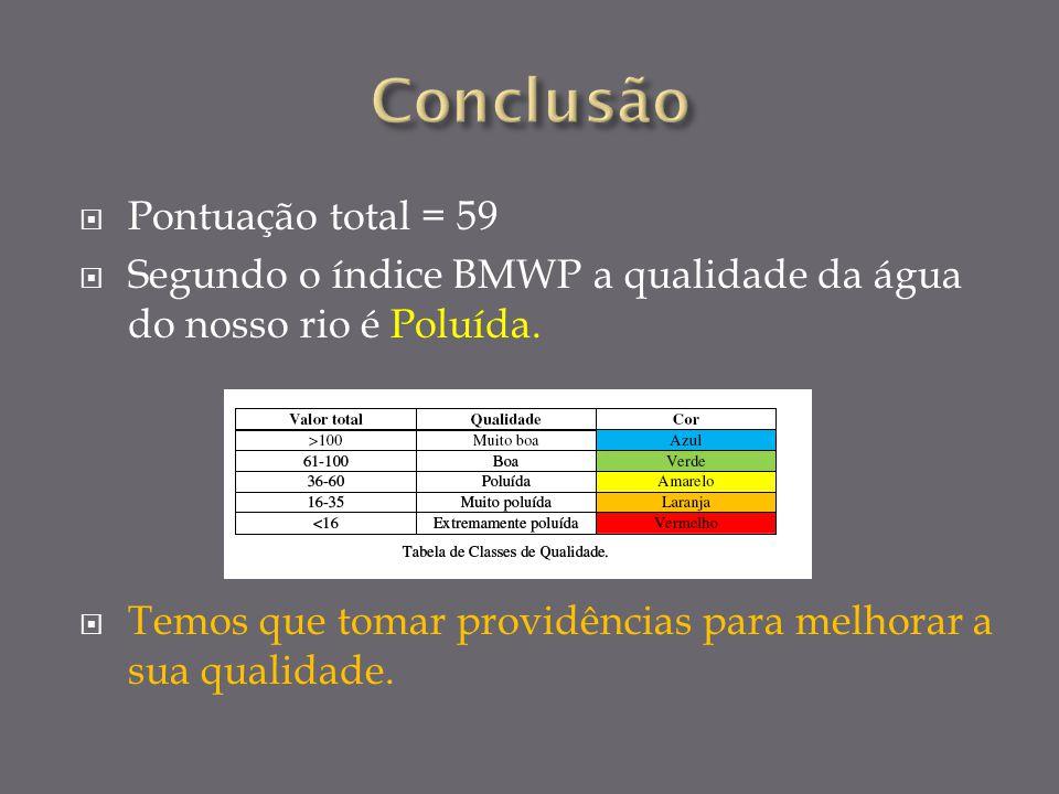 Pontuação total = 59 Segundo o índice BMWP a qualidade da água do nosso rio é Poluída.