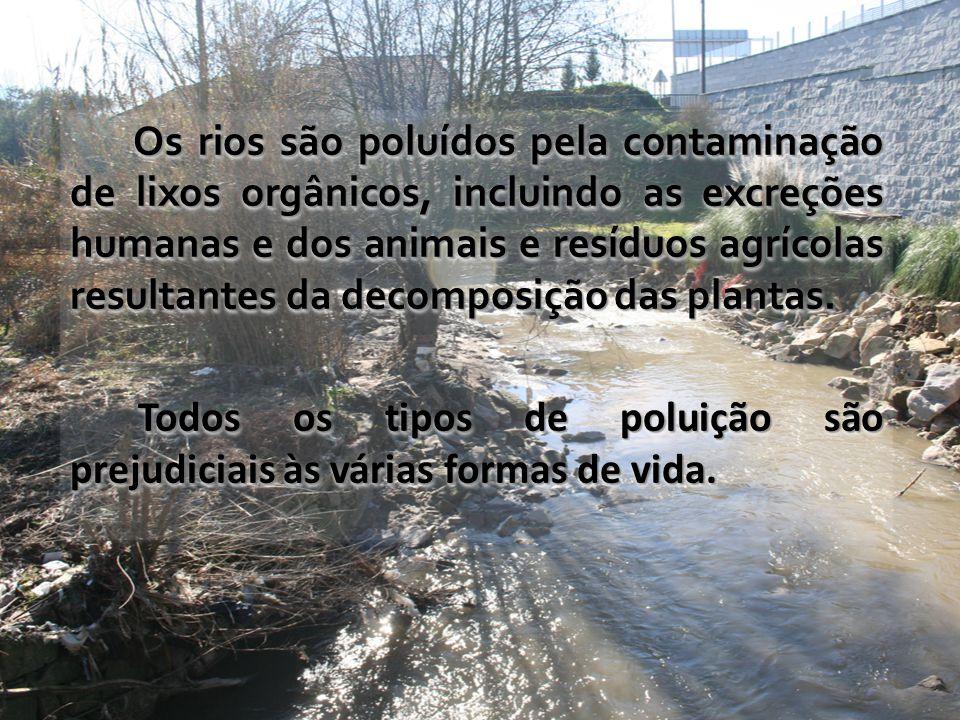 Os rios são poluídos pela contaminação de lixos orgânicos, incluindo as excreções humanas e dos animais e resíduos agrícolas resultantes da decomposição das plantas.