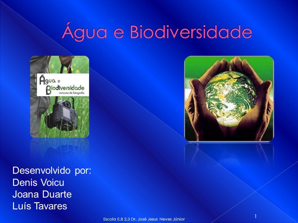 Escola E.B 2,3 Dr. José Jesus Neves Júnior 1 Desenvolvido por: Denis Voicu Joana Duarte Luís Tavares