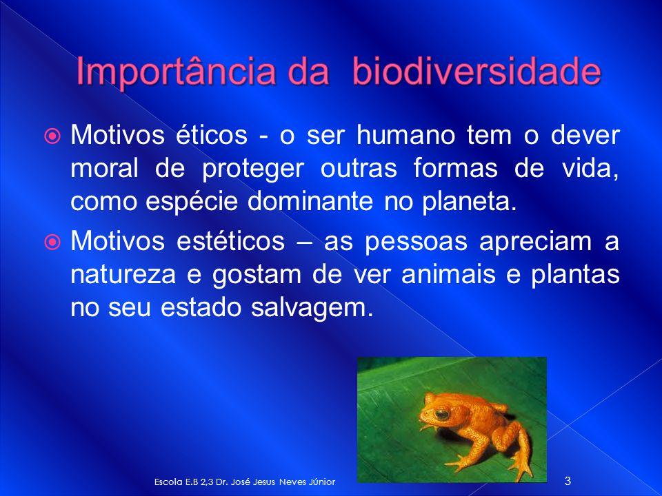 Motivos éticos - o ser humano tem o dever moral de proteger outras formas de vida, como espécie dominante no planeta. Motivos estéticos – as pessoas a