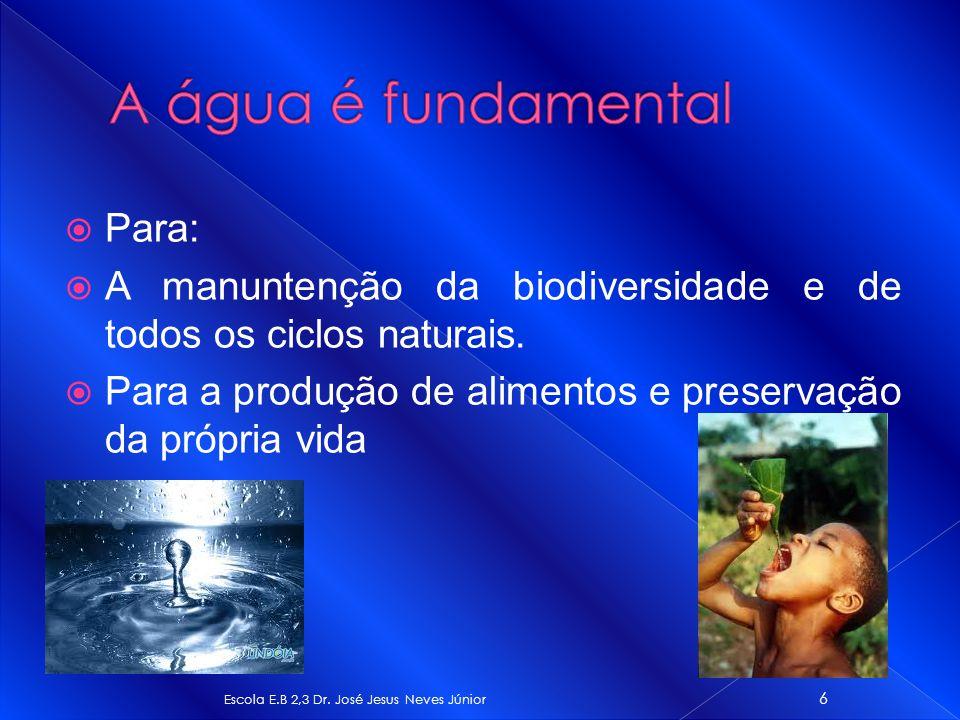 Para: A manuntenção da biodiversidade e de todos os ciclos naturais. Para a produção de alimentos e preservação da própria vida Escola E.B 2,3 Dr. Jos