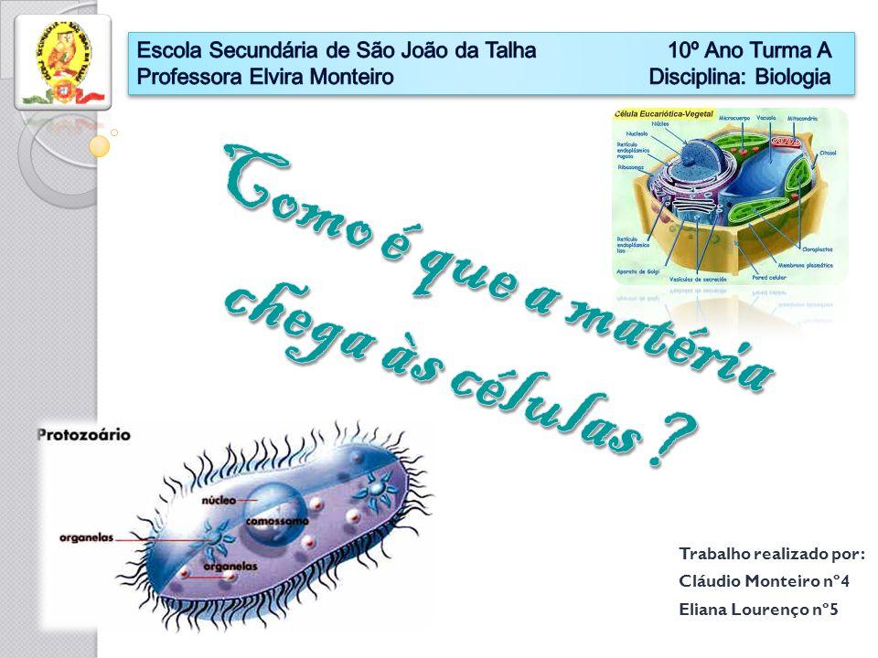 Trabalho realizado por: Cláudio Monteiro nº4 Eliana Lourenço nº5