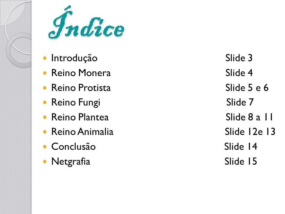 Índice Introdução Slide 3 Reino Monera Slide 4 Reino Protista Slide 5 e 6 Reino Fungi Slide 7 Reino Plantea Slide 8 a 11 Reino Animalia Slide 12e 13 C