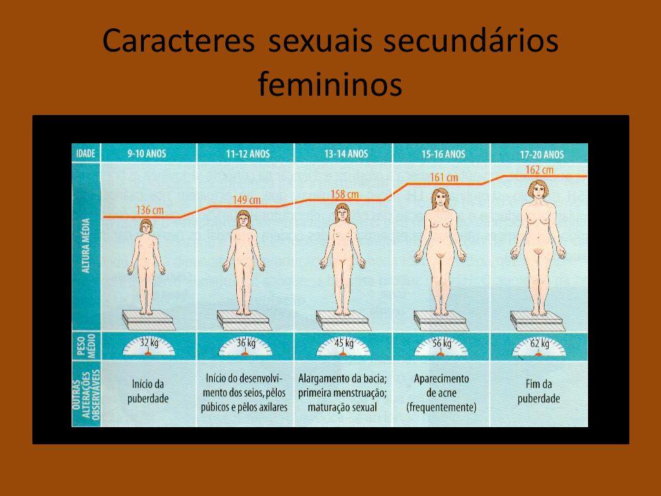 Caracteres sexuais secundários femininos