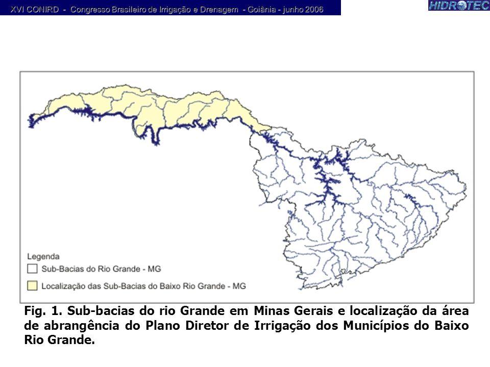 Fig. 1. Sub-bacias do rio Grande em Minas Gerais e localização da área de abrangência do Plano Diretor de Irrigação dos Municípios do Baixo Rio Grande