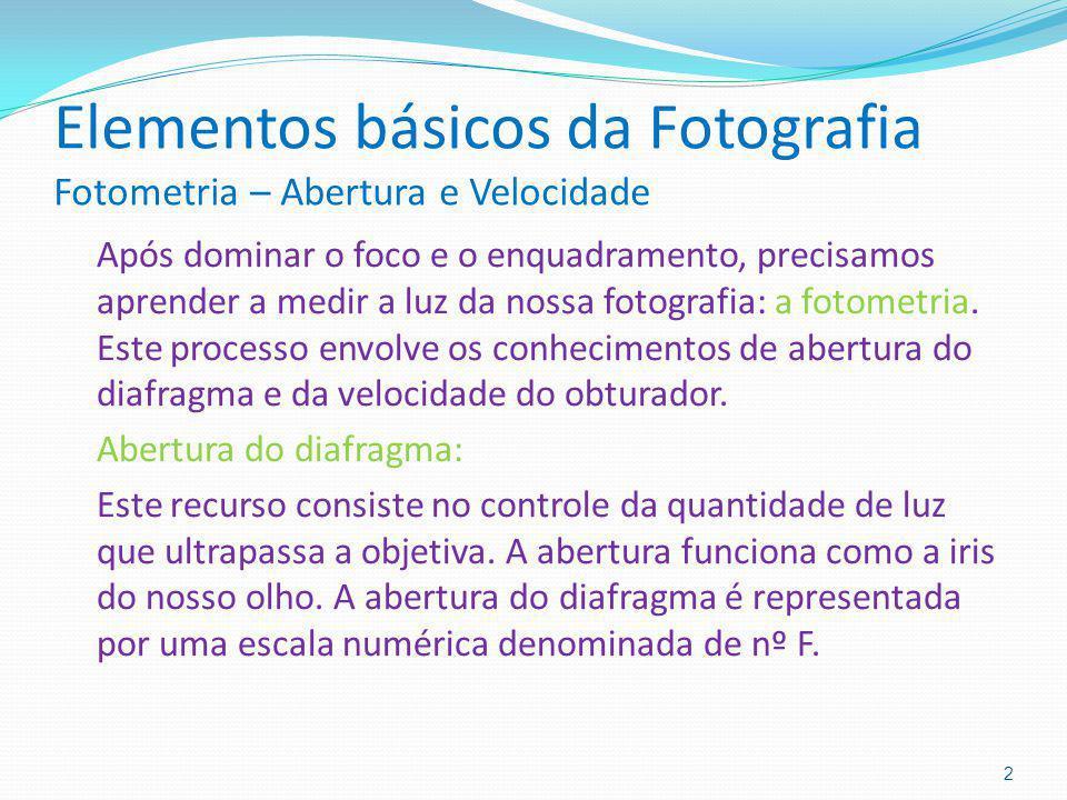 Elementos básicos da Fotografia Fotometria – Abertura e Velocidade Após dominar o foco e o enquadramento, precisamos aprender a medir a luz da nossa f