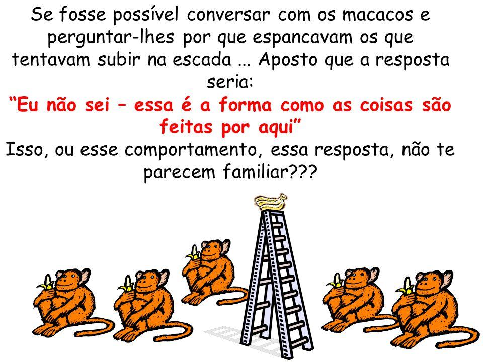 Se fosse possível conversar com os macacos e perguntar-lhes por que espancavam os que tentavam subir na escada...