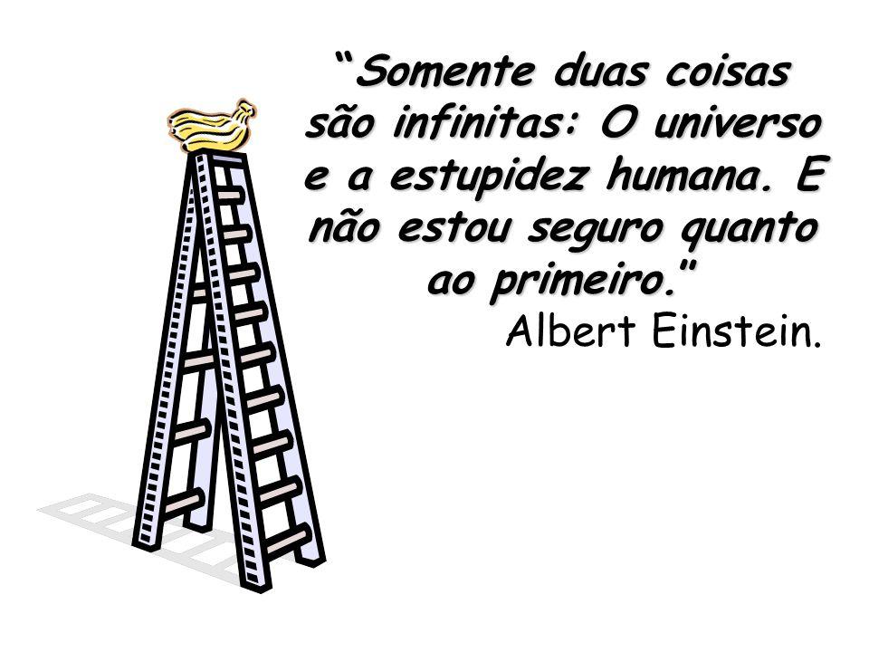 Somente duas coisas são infinitas: O universo e a estupidez humana.