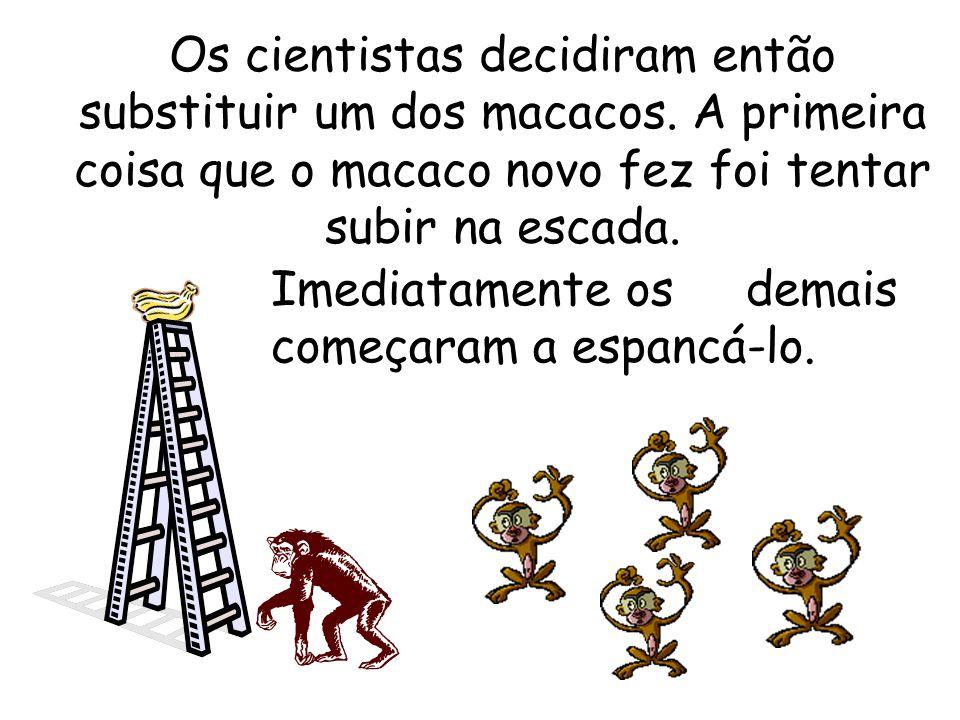 Os cientistas decidiram então substituir um dos macacos.