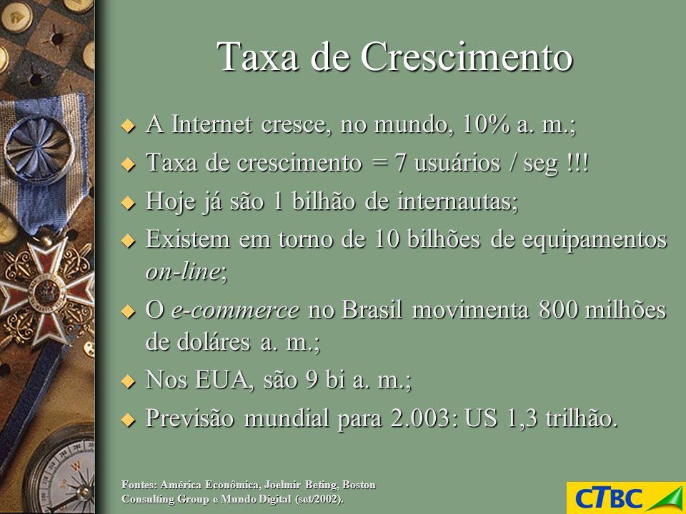 Taxa de Crescimento u A Internet cresce, no mundo, 10% a. m.; u Taxa de crescimento = 7 usuários / seg !!! u Hoje já são 1 bilhão de internautas; u Ex