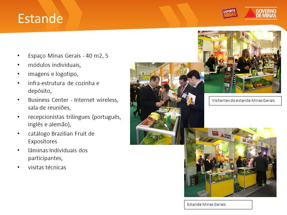 Estande Espaço Minas Gerais - 40 m2, 5 módulos individuais, imagens e logotipo, infra-estrutura de cozinha e depósito, Business Center - Internet wire