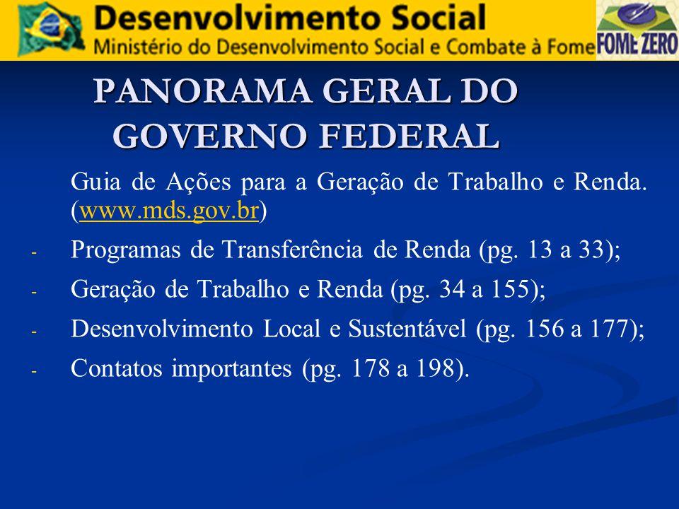 PANORAMA GERAL DO GOVERNO FEDERAL Guia de Ações para a Geração de Trabalho e Renda. (www.mds.gov.br)www.mds.gov.br - - Programas de Transferência de R