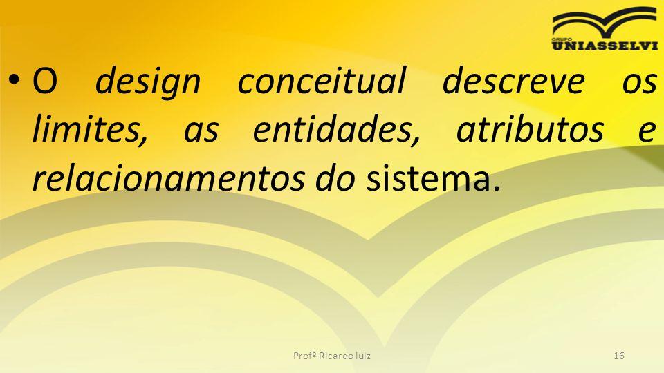 O design conceitual descreve os limites, as entidades, atributos e relacionamentos do sistema. Profº Ricardo luiz16