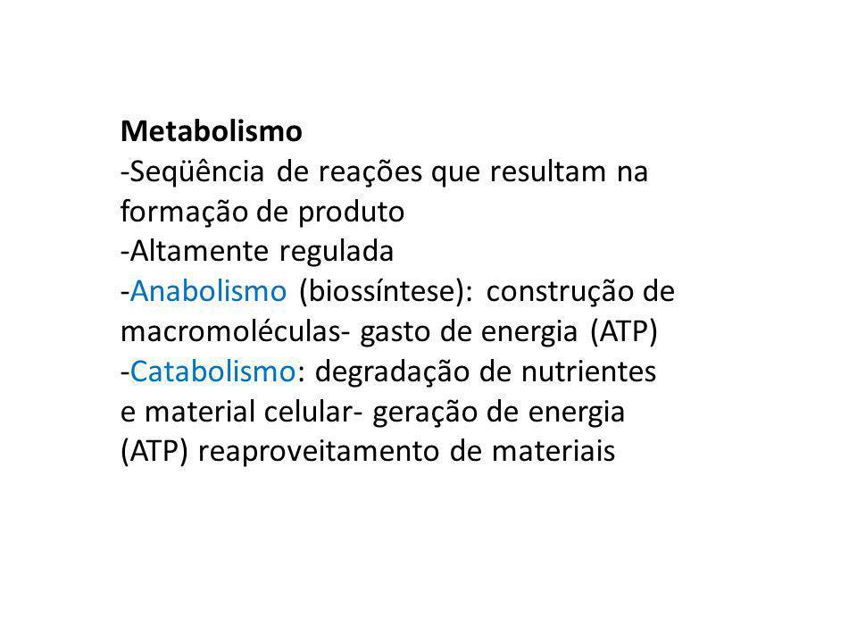 Metabolismo -Seqüência de reações que resultam na formação de produto -Altamente regulada -Anabolismo (biossíntese): construção de macromoléculas- gas