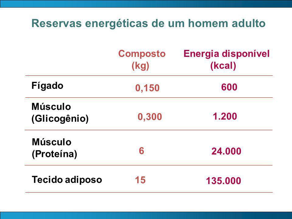 Reservas energéticas de um homem adulto Fígado Músculo (Glicogênio) Músculo (Proteína) Tecido adiposo Composto (kg) Energia disponível (kcal) 0,150 0,