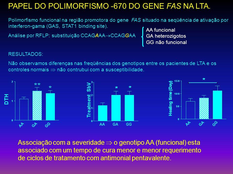 PAPEL DO POLIMORFISMO -670 DO GENE FAS NA LTA. ** * * * * Polimorfismo funcional na região promotora do gene FAS situado na seqüência de ativação por