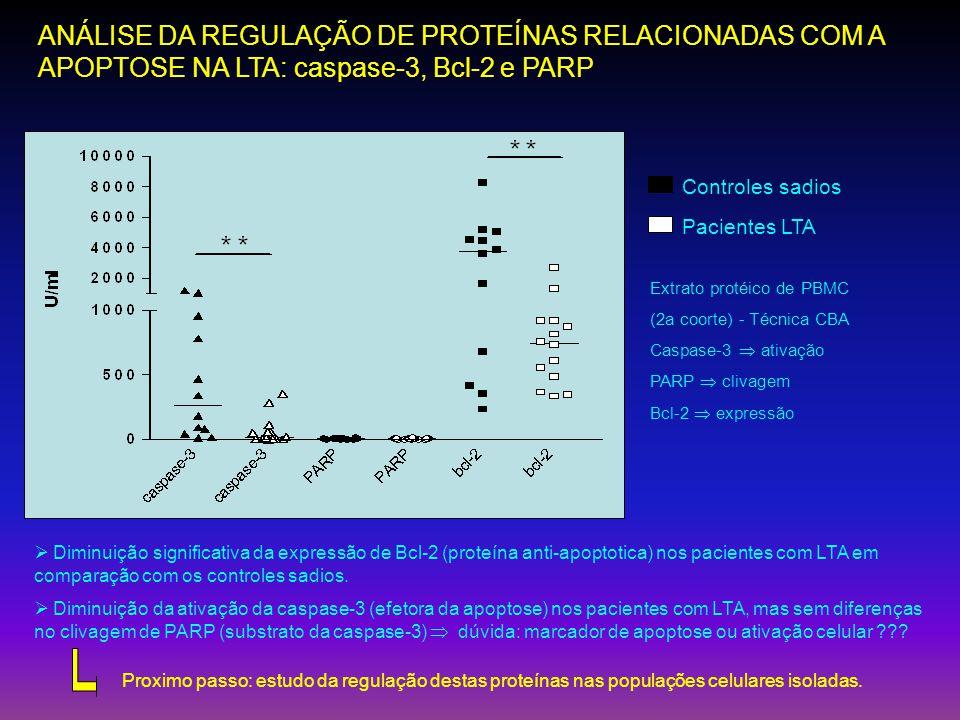 ANÁLISE DA REGULAÇÃO DE PROTEÍNAS RELACIONADAS COM A APOPTOSE NA LTA: caspase-3, Bcl-2 e PARP Extrato protéico de PBMC (2a coorte) - Técnica CBA Caspa