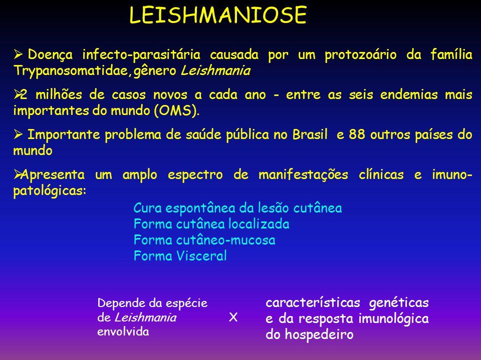LEISHMANIOSE Doença infecto-parasitária causada por um protozoário da família Trypanosomatidae, gênero Leishmania 2 milhões de casos novos a cada ano