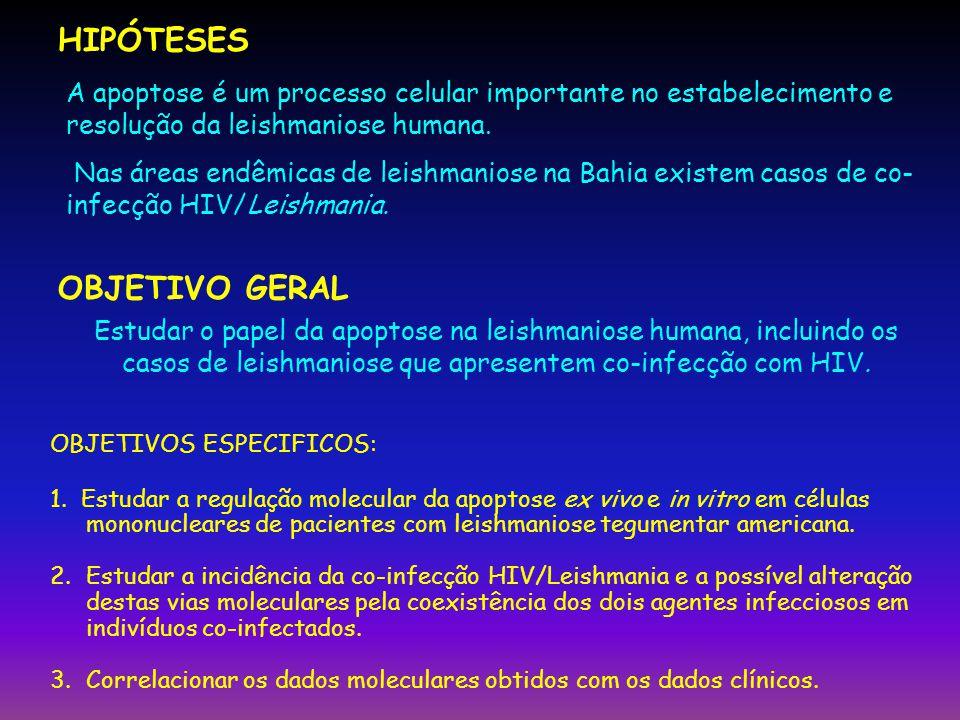 RESULTADOS V Sorologia HIV pacientes área endêmica de Jiquiriçá 124 pacientes testados 2 pacientes positivos e 2 no cut off (duplicados).